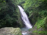 20090809_鶏鳴滝