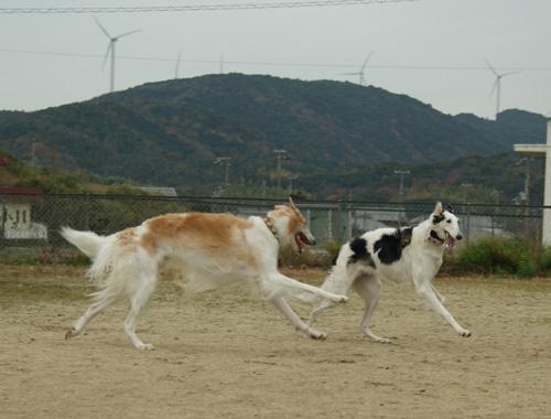 08 カイザー&愛理 09