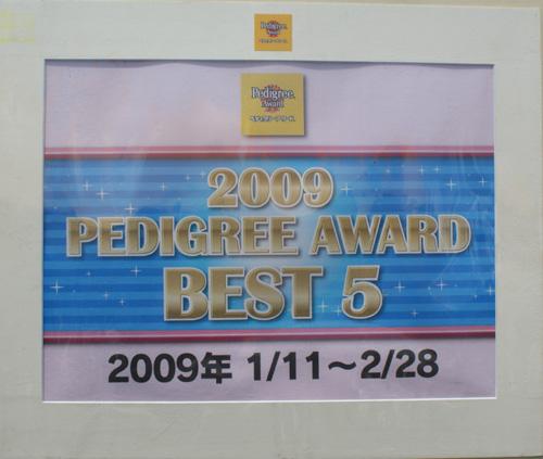 FCI四国インター2009 11
