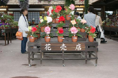 03 松江フォーゲルパーク39