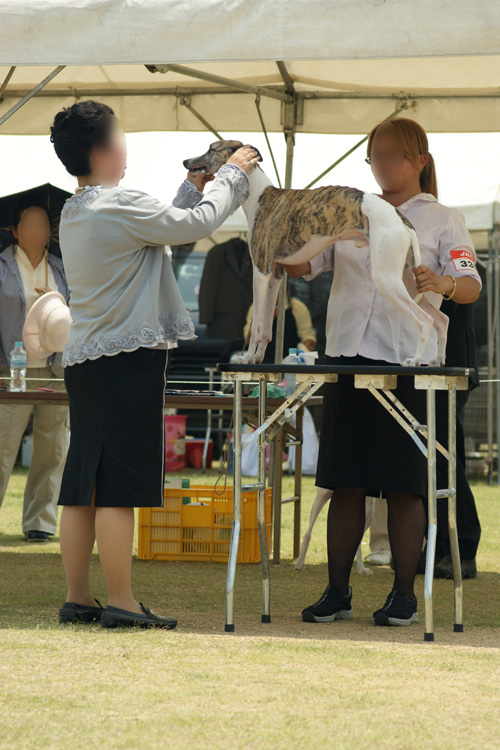 01 徳島のショー 2-2