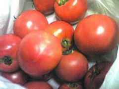 トマトs_b2008-400