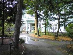 2008-9森林博~1s_b4008-400