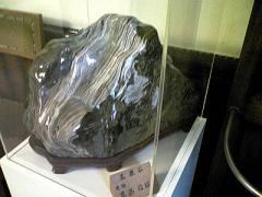 2008-9森林博~5s_b4008-400