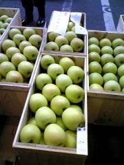 りんご品評会30_400