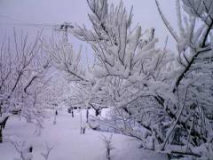 雪_400