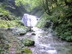 川島の滝11_512