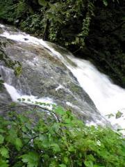 川島の滝20_512