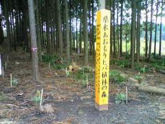 ひば植樹22_512