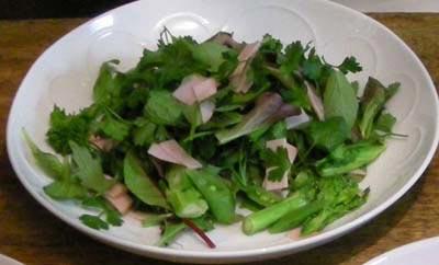 菜の花とハムとハーブのサラダ!2008.2.5