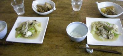 白菜と豆腐の炒めモノとぶり大根!2008.3.9