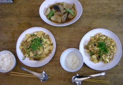 麻婆豆腐&茄子 2008.5.4