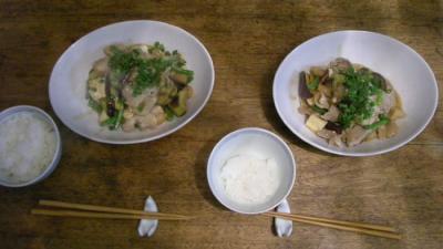 海老と豚肉と豆腐と野菜の中華風炒めモノ。2008.5.14