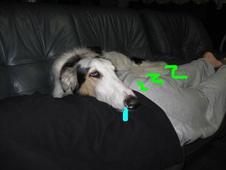 2009-6-21 002