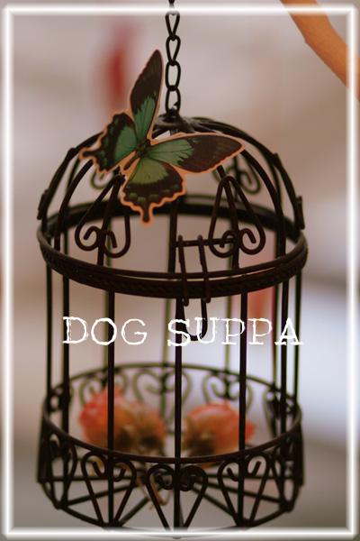 DOG SUPPA