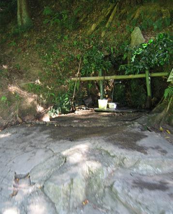 200808246湧き水