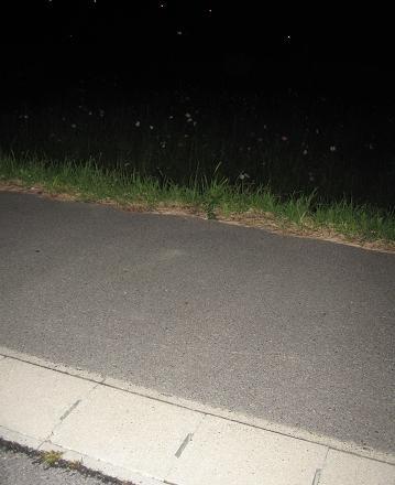 200810084夜の散歩
