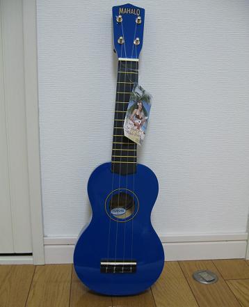 20081124アロハ