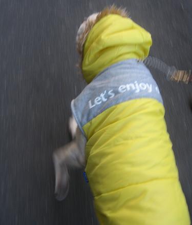 200902102防寒いぶき