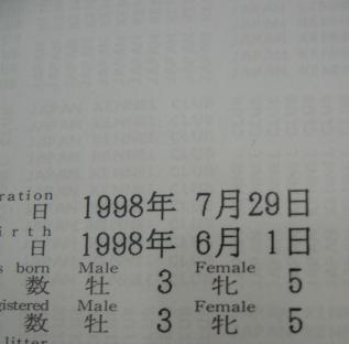 2009060110ありがとう11才