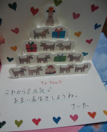 200906053贈り物