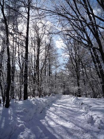 雪のち晴れ1