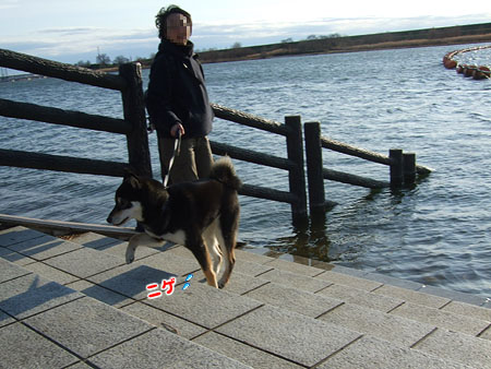 荒川のため池(2008/1/13)