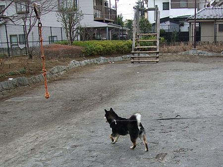 ターザンロープ(2008/2/2)