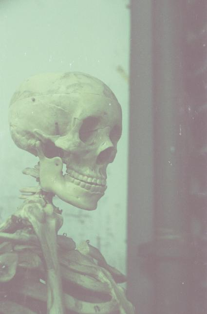 亲爱的骨头。