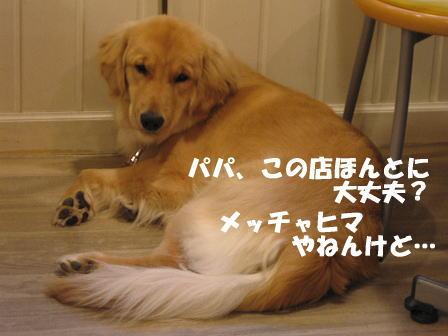 IMG_0761-1.jpg