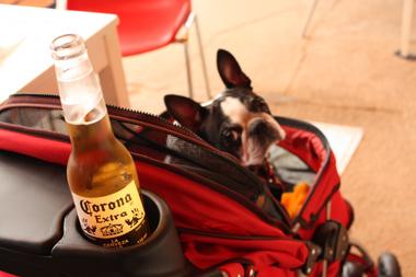 カートとビール
