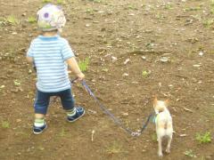 ちび太を散歩1