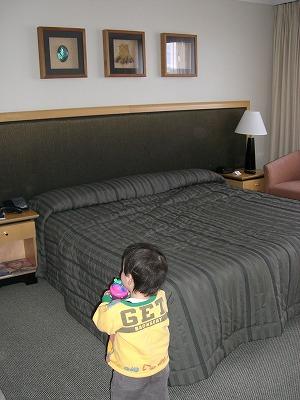 rotoura hotel1