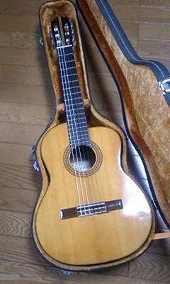 レキントギター