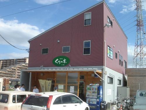Nagoya 006 kurinoki