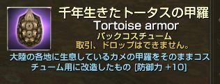 千年生きたトータスの甲羅