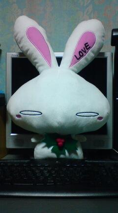 ウサギ_01