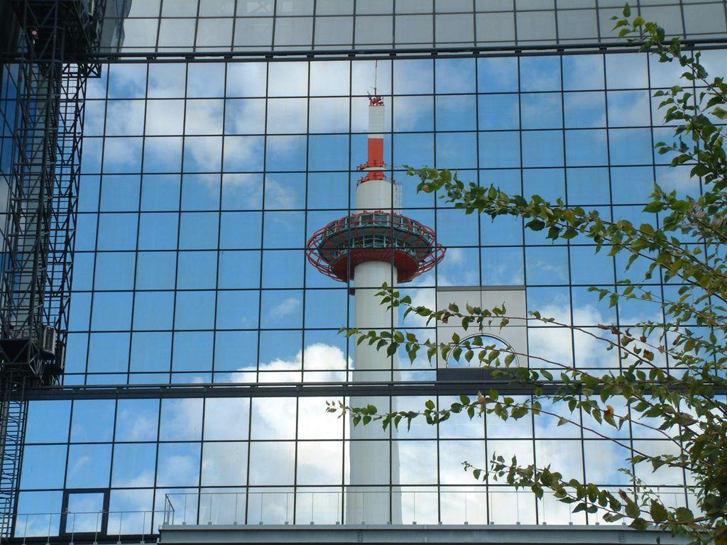 DSCF_20091011_01000.jpg