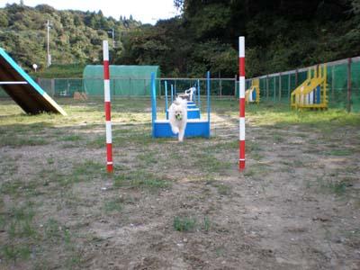 PA270018.jpg