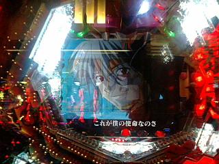 20090531_kaworu