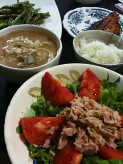 サラダ・焼き魚・いんげんとししとうの炒め物・うどんの残り