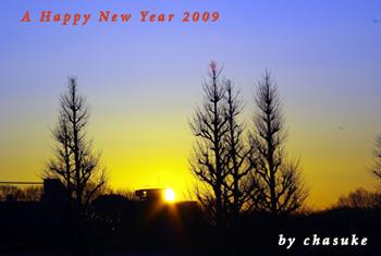 20090101_hinode.jpg