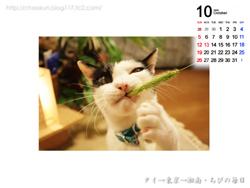 Chibiカレンダー2008年10月その1