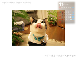 Chibiカレンダー2008年11月その1