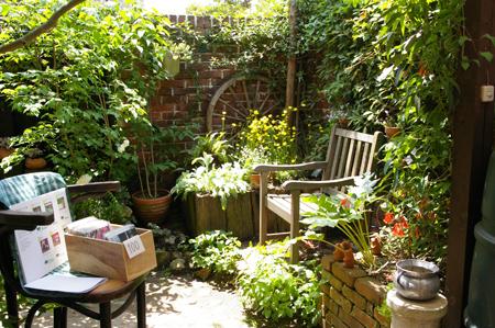 J's garden