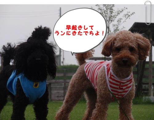 001_20090803193213.jpg