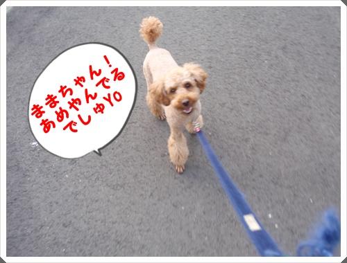 009_20090705213130.jpg