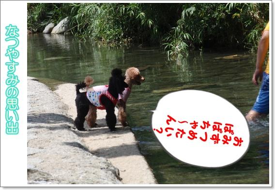 011_20090719071124.jpg