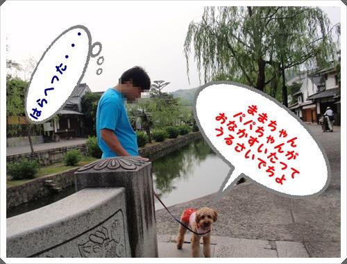 012_20090615231924.jpg