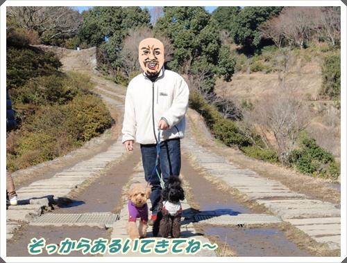 013_20100119194650.jpg